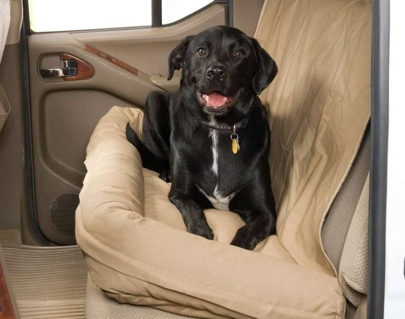 Dog seat for car
