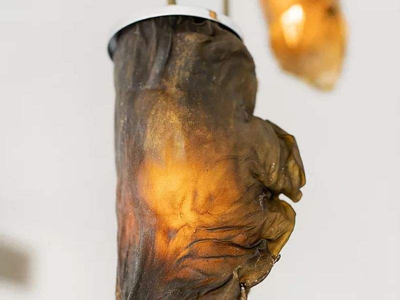 Algae Lamps Look Beautifully Molded Sculptures with Natural Shades
