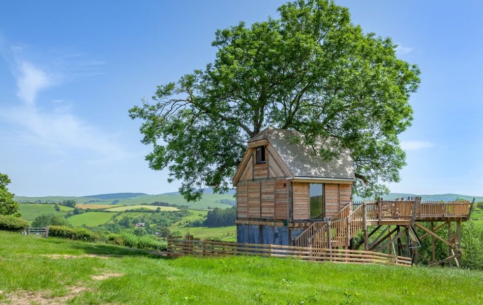 Cadwollen's Treehouse at Squirrel's Nest in Mid Wales, UK is Perfect for Couples