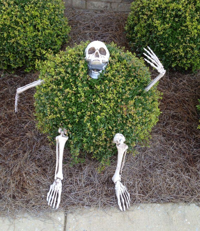 Skeleton hiding in bushes