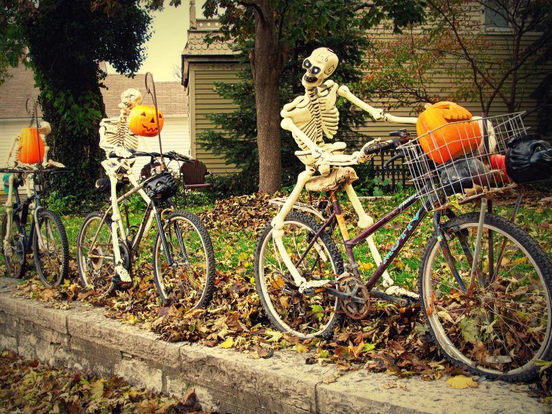 Skeleton riders in backyard