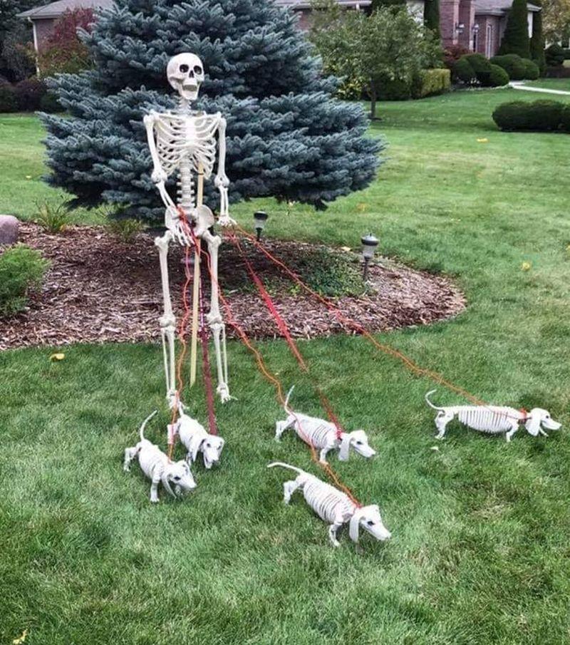 Skeleton taking puppies to a walk