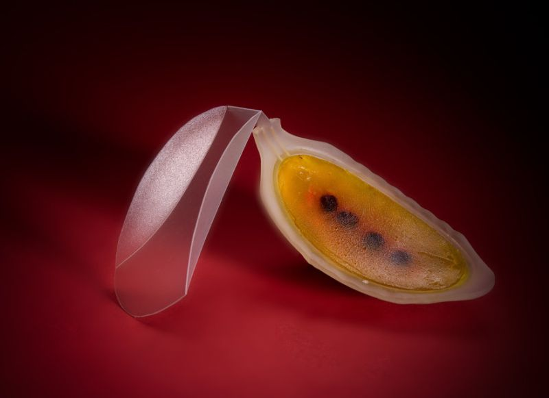 Student Designs Futuristic Neo Fruits Using 4D Printers