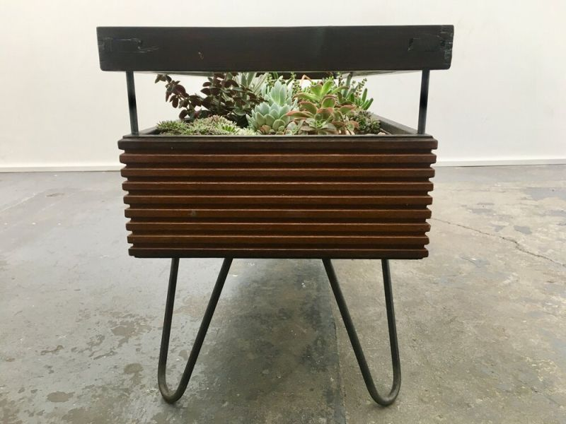 Hackney Botanical Terrarium Tables are made of Reclaimed Wood and Glass