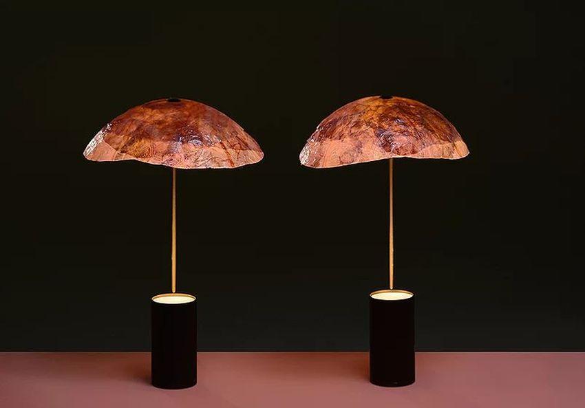 Nir Meiri and Vaidehi Thakkar Creates Veggie Lights from Red Cabbage Leaves