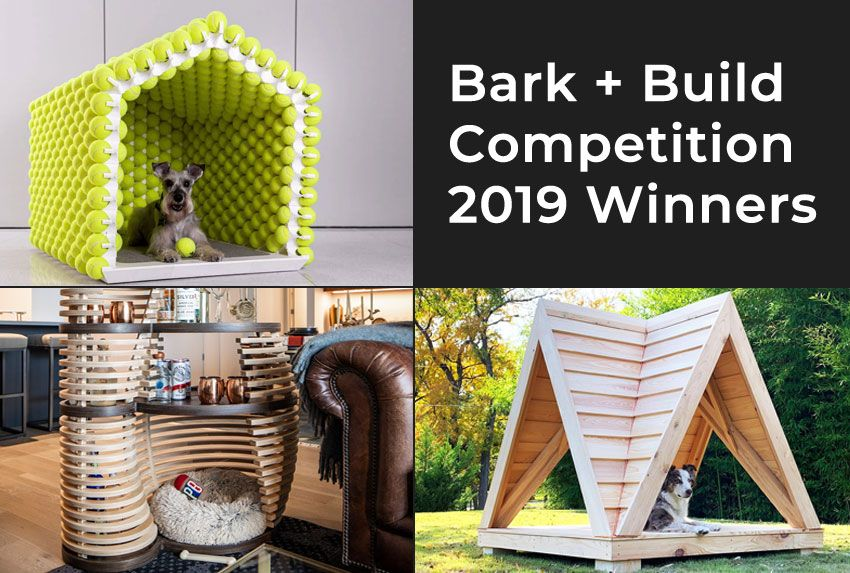 Bark + Build competition 2019 winners