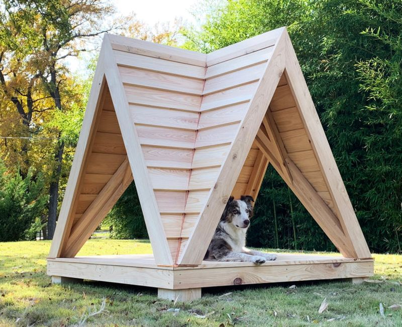 Winners of Bark + Build Competition 2019