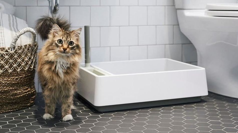 Minimalist Cove Litter Box Beautifully Blends Style and Functionality