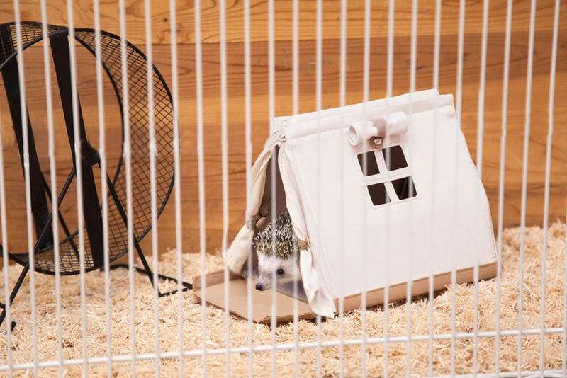 SOLCION's Tent-Shaped Portable House for Hedgehogs